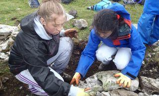 Ra Case Study Ndcs Dry Stone Walling 2